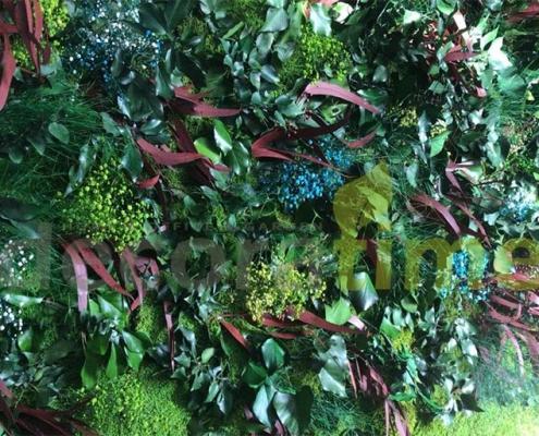 Bitki Duvarı